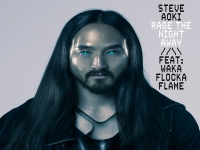 Steve Aoki ft. Waka Flocka Flame - Rage The Night Away