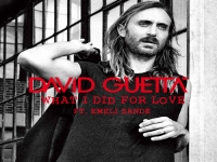 David Guetta ft Emeli Sande - What I Did For Love